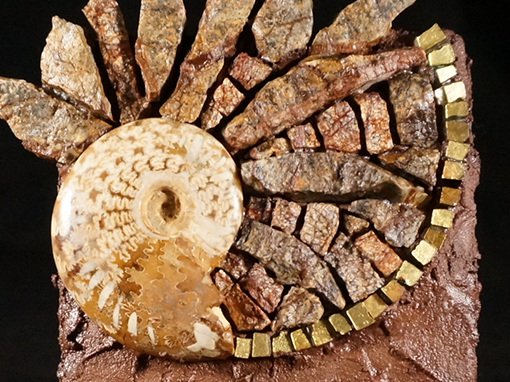 An Ammonite Dreams